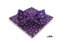Bow tie and hanky set